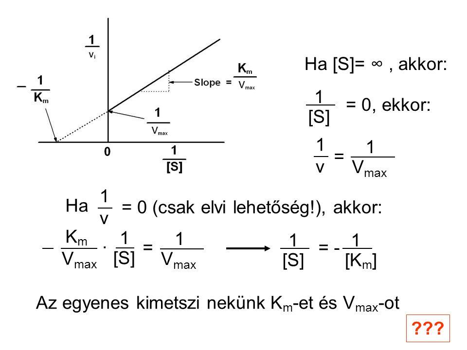 Ha [S]= ∞ , akkor: 1. [S] = 0, ekkor: Vmax. 1. v. = Ha. v. 1. = 0 (csak elvi lehetőség!), akkor: